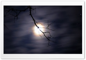Night Sky HD Wide Wallpaper for Widescreen