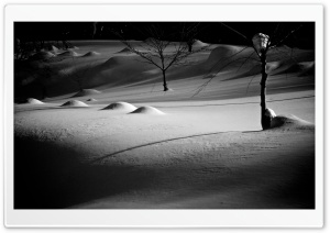 Night Winter HD Wide Wallpaper for Widescreen