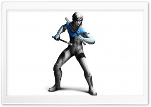 Nightwing - Batman Arkham City HD Wide Wallpaper for Widescreen