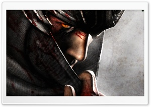 Ninja Gaiden 3 (Video Game 2012) HD Wide Wallpaper for 4K UHD Widescreen desktop & smartphone