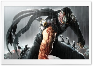 Ninja Gaiden 3 HD Wide Wallpaper for Widescreen