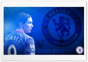 Niño Torres Chelsea HD Wide Wallpaper for Widescreen