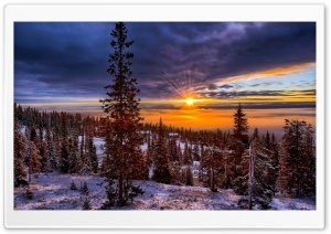 Norway Sunset Over Forest HD Wide Wallpaper for 4K UHD Widescreen desktop & smartphone
