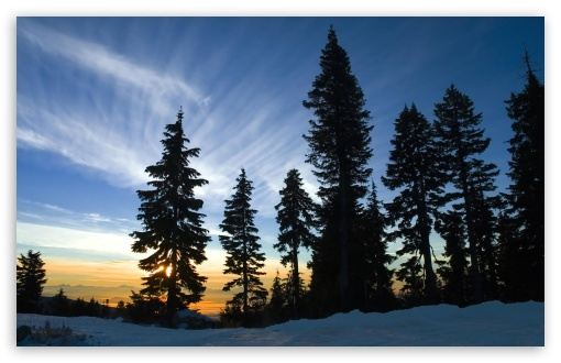 November Sky, Mount Seymour, British Columbia HD wallpaper for Wide 16:10 5:3 Widescreen WHXGA WQXGA WUXGA WXGA WGA ; HD 16:9 High Definition WQHD QWXGA 1080p 900p 720p QHD nHD ; Standard 4:3 5:4 3:2 Fullscreen UXGA XGA SVGA QSXGA SXGA DVGA HVGA HQVGA devices ( Apple PowerBook G4 iPhone 4 3G 3GS iPod Touch ) ; Tablet 1:1 ; iPad 1/2/Mini ; Mobile 4:3 5:3 3:2 16:9 5:4 - UXGA XGA SVGA WGA DVGA HVGA HQVGA devices ( Apple PowerBook G4 iPhone 4 3G 3GS iPod Touch ) WQHD QWXGA 1080p 900p 720p QHD nHD QSXGA SXGA ;