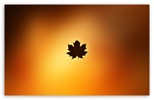 Oak Leaf Background HD wallpaper for Wide 16:10 5:3 Widescreen WHXGA WQXGA WUXGA WXGA WGA ; HD 16:9 High Definition WQHD QWXGA 1080p 900p 720p QHD nHD ; Standard 4:3 5:4 3:2 Fullscreen UXGA XGA SVGA QSXGA SXGA DVGA HVGA HQVGA devices ( Apple PowerBook G4 iPhone 4 3G 3GS iPod Touch ) ; Tablet 1:1 ; iPad 1/2/Mini ; Mobile 4:3 5:3 3:2 16:9 5:4 - UXGA XGA SVGA WGA DVGA HVGA HQVGA devices ( Apple PowerBook G4 iPhone 4 3G 3GS iPod Touch ) WQHD QWXGA 1080p 900p 720p QHD nHD QSXGA SXGA ; Dual 16:10 5:3 16:9 4:3 5:4 WHXGA WQXGA WUXGA WXGA WGA WQHD QWXGA 1080p 900p 720p QHD nHD UXGA XGA SVGA QSXGA SXGA ;