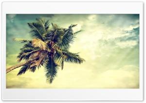 Ocean View HD Wide Wallpaper for 4K UHD Widescreen desktop & smartphone
