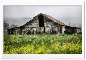 Old Barn HD Wide Wallpaper for Widescreen