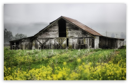 Download Old Barn HD Wallpaper