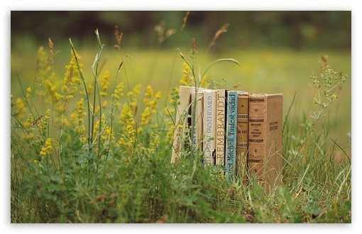 Old Books Outdoors ❤ 4K UHD Wallpaper for Wide 16:10 5:3 Widescreen WHXGA WQXGA WUXGA WXGA WGA ; 4K UHD 16:9 Ultra High Definition 2160p 1440p 1080p 900p 720p ; Standard 4:3 5:4 3:2 Fullscreen UXGA XGA SVGA QSXGA SXGA DVGA HVGA HQVGA ( Apple PowerBook G4 iPhone 4 3G 3GS iPod Touch ) ; Tablet 1:1 ; iPad 1/2/Mini ; Mobile 4:3 5:3 3:2 16:9 5:4 - UXGA XGA SVGA WGA DVGA HVGA HQVGA ( Apple PowerBook G4 iPhone 4 3G 3GS iPod Touch ) 2160p 1440p 1080p 900p 720p QSXGA SXGA ; Dual 4:3 5:4 UXGA XGA SVGA QSXGA SXGA ;
