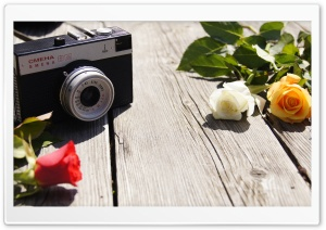 Old Camera and Roses HD Wide Wallpaper for Widescreen