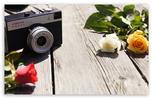 Old Camera and Roses HD wallpaper for Wide 16:10 5:3 Widescreen WHXGA WQXGA WUXGA WXGA WGA ; HD 16:9 High Definition WQHD QWXGA 1080p 900p 720p QHD nHD ; UHD 16:9 WQHD QWXGA 1080p 900p 720p QHD nHD ; Standard 4:3 5:4 3:2 Fullscreen UXGA XGA SVGA QSXGA SXGA DVGA HVGA HQVGA devices ( Apple PowerBook G4 iPhone 4 3G 3GS iPod Touch ) ; iPad 1/2/Mini ; Mobile 4:3 5:3 3:2 16:9 5:4 - UXGA XGA SVGA WGA DVGA HVGA HQVGA devices ( Apple PowerBook G4 iPhone 4 3G 3GS iPod Touch ) WQHD QWXGA 1080p 900p 720p QHD nHD QSXGA SXGA ; Dual 16:10 4:3 5:4 WHXGA WQXGA WUXGA WXGA UXGA XGA SVGA QSXGA SXGA ;