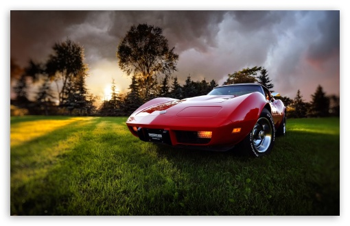 Old Chevrolet Corvette ❤ 4K UHD Wallpaper for Wide 16:10 5:3 Widescreen WHXGA WQXGA WUXGA WXGA WGA ; 4K UHD 16:9 Ultra High Definition 2160p 1440p 1080p 900p 720p ; Standard 4:3 5:4 3:2 Fullscreen UXGA XGA SVGA QSXGA SXGA DVGA HVGA HQVGA ( Apple PowerBook G4 iPhone 4 3G 3GS iPod Touch ) ; Tablet 1:1 ; iPad 1/2/Mini ; Mobile 4:3 5:3 3:2 16:9 5:4 - UXGA XGA SVGA WGA DVGA HVGA HQVGA ( Apple PowerBook G4 iPhone 4 3G 3GS iPod Touch ) 2160p 1440p 1080p 900p 720p QSXGA SXGA ; Dual 16:10 5:3 16:9 4:3 5:4 WHXGA WQXGA WUXGA WXGA WGA 2160p 1440p 1080p 900p 720p UXGA XGA SVGA QSXGA SXGA ;