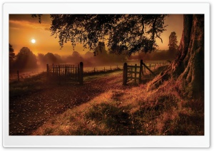 Old Road Gate HD Wide Wallpaper for Widescreen