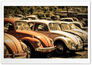Old Volkswagen Beetle Junkyard HD Wide Wallpaper for 4K UHD Widescreen desktop & smartphone