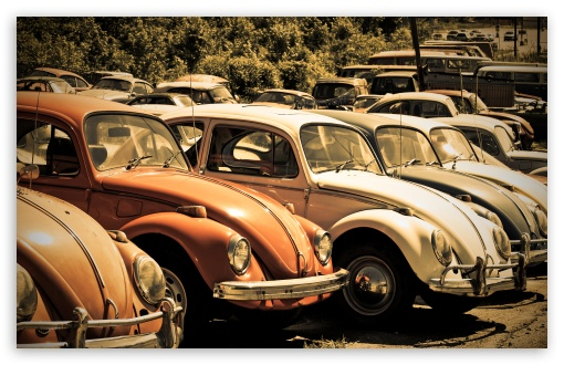 Old Volkswagen Beetle Junkyard HD wallpaper for Wide 16:10 5:3 Widescreen WHXGA WQXGA WUXGA WXGA WGA ; HD 16:9 High Definition WQHD QWXGA 1080p 900p 720p QHD nHD ; UHD 16:9 WQHD QWXGA 1080p 900p 720p QHD nHD ; Standard 4:3 5:4 3:2 Fullscreen UXGA XGA SVGA QSXGA SXGA DVGA HVGA HQVGA devices ( Apple PowerBook G4 iPhone 4 3G 3GS iPod Touch ) ; Tablet 1:1 ; iPad 1/2/Mini ; Mobile 4:3 5:3 3:2 16:9 5:4 - UXGA XGA SVGA WGA DVGA HVGA HQVGA devices ( Apple PowerBook G4 iPhone 4 3G 3GS iPod Touch ) WQHD QWXGA 1080p 900p 720p QHD nHD QSXGA SXGA ;