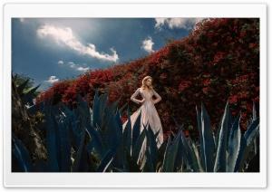 One Of The World's Most Glamorous Women Ultra HD Wallpaper for 4K UHD Widescreen desktop, tablet & smartphone