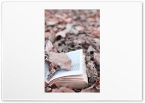 Open_Book Ultra HD Wallpaper for 4K UHD Widescreen desktop, tablet & smartphone