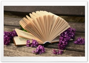 Open Book Macro HD Wide Wallpaper for Widescreen