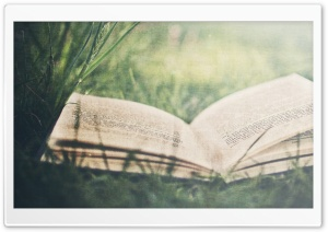 Open Book On Green Grass HD Wide Wallpaper for Widescreen