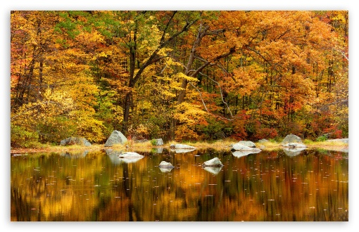 fall wallpaper widescreen monitor - photo #8