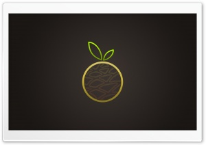 Orange Fruit Vector Art HD Wide Wallpaper for Widescreen