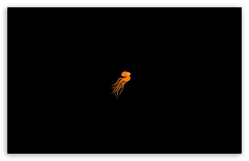 Orange Octopus HD wallpaper for Wide 16:10 5:3 Widescreen WHXGA WQXGA WUXGA WXGA WGA ; HD 16:9 High Definition WQHD QWXGA 1080p 900p 720p QHD nHD ; Standard 4:3 5:4 3:2 Fullscreen UXGA XGA SVGA QSXGA SXGA DVGA HVGA HQVGA devices ( Apple PowerBook G4 iPhone 4 3G 3GS iPod Touch ) ; Tablet 1:1 ; iPad 1/2/Mini ; Mobile 4:3 5:3 3:2 16:9 5:4 - UXGA XGA SVGA WGA DVGA HVGA HQVGA devices ( Apple PowerBook G4 iPhone 4 3G 3GS iPod Touch ) WQHD QWXGA 1080p 900p 720p QHD nHD QSXGA SXGA ; Dual 16:10 5:3 16:9 4:3 5:4 WHXGA WQXGA WUXGA WXGA WGA WQHD QWXGA 1080p 900p 720p QHD nHD UXGA XGA SVGA QSXGA SXGA ;