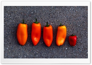 Orange Peppers HD Wide Wallpaper for Widescreen