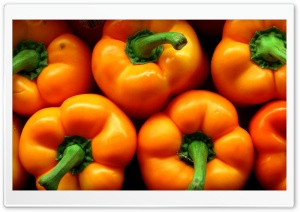 Orange Peppers HD Wide Wallpaper for 4K UHD Widescreen desktop & smartphone