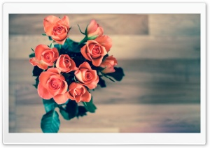 Orange Roses Bouquet HD Wide Wallpaper for Widescreen