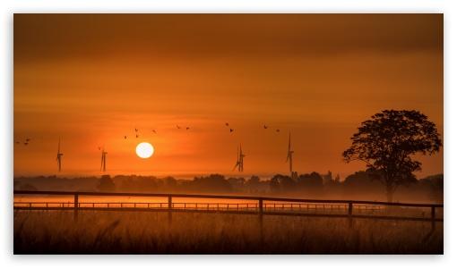 Orange Sunrise, Wind Turbines, Birds, Tree, Morning ❤ 4K UHD Wallpaper for UltraWide 21:9 24:10 ; 4K UHD 16:9 Ultra High Definition 2160p 1440p 1080p 900p 720p ; UHD 16:9 2160p 1440p 1080p 900p 720p ; Mobile 16:9 - 2160p 1440p 1080p 900p 720p ; Dual 16:10 5:3 16:9 4:3 5:4 3:2 WHXGA WQXGA WUXGA WXGA WGA 2160p 1440p 1080p 900p 720p UXGA XGA SVGA QSXGA SXGA DVGA HVGA HQVGA ( Apple PowerBook G4 iPhone 4 3G 3GS iPod Touch ) ;