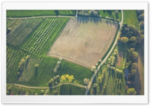 Orchards, Agriculture Field Aerial View Ultra HD Wallpaper for 4K UHD Widescreen desktop, tablet & smartphone