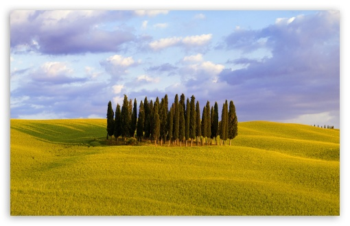 Orcia Valley, Italy HD wallpaper for Wide 16:10 5:3 Widescreen WHXGA WQXGA WUXGA WXGA WGA ; HD 16:9 High Definition WQHD QWXGA 1080p 900p 720p QHD nHD ; Standard 4:3 5:4 3:2 Fullscreen UXGA XGA SVGA QSXGA SXGA DVGA HVGA HQVGA devices ( Apple PowerBook G4 iPhone 4 3G 3GS iPod Touch ) ; Tablet 1:1 ; iPad 1/2/Mini ; Mobile 4:3 5:3 3:2 16:9 5:4 - UXGA XGA SVGA WGA DVGA HVGA HQVGA devices ( Apple PowerBook G4 iPhone 4 3G 3GS iPod Touch ) WQHD QWXGA 1080p 900p 720p QHD nHD QSXGA SXGA ;