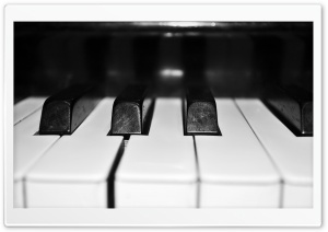 Organ Keyboard HD Wide Wallpaper for Widescreen