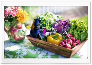 Organic Vegetables HD Wide Wallpaper for Widescreen