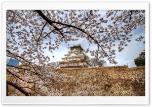 Osaka Castle Sakura HD Wide Wallpaper for Widescreen