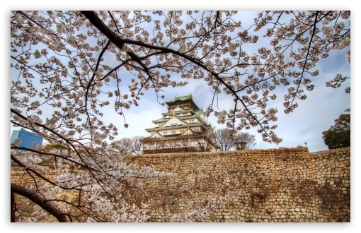 Osaka Castle Sakura ❤ 4K UHD Wallpaper for Wide 16:10 5:3 Widescreen WHXGA WQXGA WUXGA WXGA WGA ; 4K UHD 16:9 Ultra High Definition 2160p 1440p 1080p 900p 720p ; UHD 16:9 2160p 1440p 1080p 900p 720p ; Standard 4:3 5:4 3:2 Fullscreen UXGA XGA SVGA QSXGA SXGA DVGA HVGA HQVGA ( Apple PowerBook G4 iPhone 4 3G 3GS iPod Touch ) ; Smartphone 5:3 WGA ; Tablet 1:1 ; iPad 1/2/Mini ; Mobile 4:3 5:3 3:2 16:9 5:4 - UXGA XGA SVGA WGA DVGA HVGA HQVGA ( Apple PowerBook G4 iPhone 4 3G 3GS iPod Touch ) 2160p 1440p 1080p 900p 720p QSXGA SXGA ;