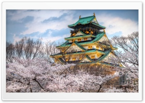 Osaka Castle Spring HD Wide Wallpaper for Widescreen
