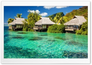 Overwater Bungalows HD Wide Wallpaper for Widescreen