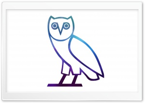 OVO OWL HD Wide Wallpaper for Widescreen