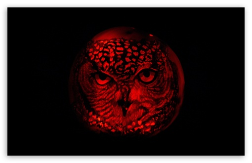 Owl Pumpkin Carving ❤ 4K UHD Wallpaper for Wide 16:10 5:3 Widescreen WHXGA WQXGA WUXGA WXGA WGA ; 4K UHD 16:9 Ultra High Definition 2160p 1440p 1080p 900p 720p ; UHD 16:9 2160p 1440p 1080p 900p 720p ; Standard 4:3 5:4 3:2 Fullscreen UXGA XGA SVGA QSXGA SXGA DVGA HVGA HQVGA ( Apple PowerBook G4 iPhone 4 3G 3GS iPod Touch ) ; Smartphone 5:3 WGA ; Tablet 1:1 ; iPad 1/2/Mini ; Mobile 4:3 5:3 3:2 16:9 5:4 - UXGA XGA SVGA WGA DVGA HVGA HQVGA ( Apple PowerBook G4 iPhone 4 3G 3GS iPod Touch ) 2160p 1440p 1080p 900p 720p QSXGA SXGA ;