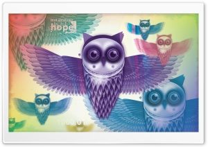 Owls HD Wide Wallpaper for Widescreen