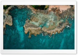 Pacific Ocean Shore Aerial View