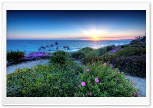 Pacific Sunset HD Wide Wallpaper for Widescreen