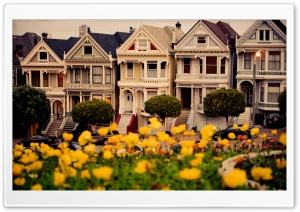 Painted Ladies, San Francisco HD Wide Wallpaper for Widescreen