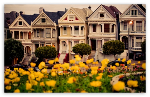 Painted Ladies, San Francisco HD wallpaper for Wide 16:10 5:3 Widescreen WHXGA WQXGA WUXGA WXGA WGA ; HD 16:9 High Definition WQHD QWXGA 1080p 900p 720p QHD nHD ; Standard 4:3 5:4 Fullscreen UXGA XGA SVGA QSXGA SXGA ; Tablet 1:1 ; iPad 1/2/Mini ; Mobile 4:3 5:3 16:9 5:4 - UXGA XGA SVGA WGA WQHD QWXGA 1080p 900p 720p QHD nHD QSXGA SXGA ;