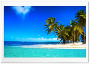 Palm Beach Corner HD Wide Wallpaper for Widescreen