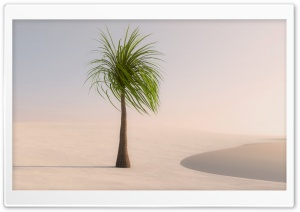 Palm Tree Ultra HD Wallpaper for 4K UHD Widescreen desktop, tablet & smartphone