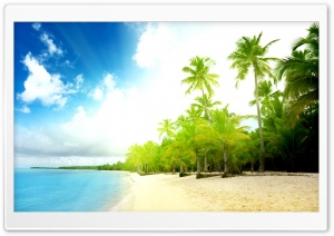 Palm Trees Beach HD Wide Wallpaper for Widescreen