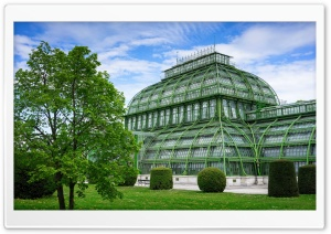 Palmenhaus Vienna HD Wide Wallpaper for 4K UHD Widescreen desktop & smartphone