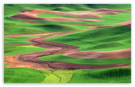Palouse Hills From Steptoe Butte Washington HD wallpaper for Wide 16:10 5:3 Widescreen WHXGA WQXGA WUXGA WXGA WGA ; HD 16:9 High Definition WQHD QWXGA 1080p 900p 720p QHD nHD ; Standard 4:3 5:4 3:2 Fullscreen UXGA XGA SVGA QSXGA SXGA DVGA HVGA HQVGA devices ( Apple PowerBook G4 iPhone 4 3G 3GS iPod Touch ) ; iPad 1/2/Mini ; Mobile 4:3 5:3 3:2 16:9 5:4 - UXGA XGA SVGA WGA DVGA HVGA HQVGA devices ( Apple PowerBook G4 iPhone 4 3G 3GS iPod Touch ) WQHD QWXGA 1080p 900p 720p QHD nHD QSXGA SXGA ;